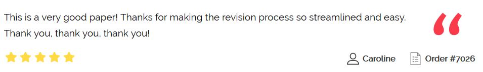essayusa review