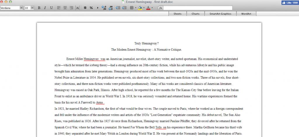 essay typer example